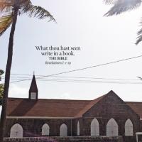St. Kitts & Nevis_nevis2